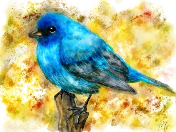 Gorrion azul